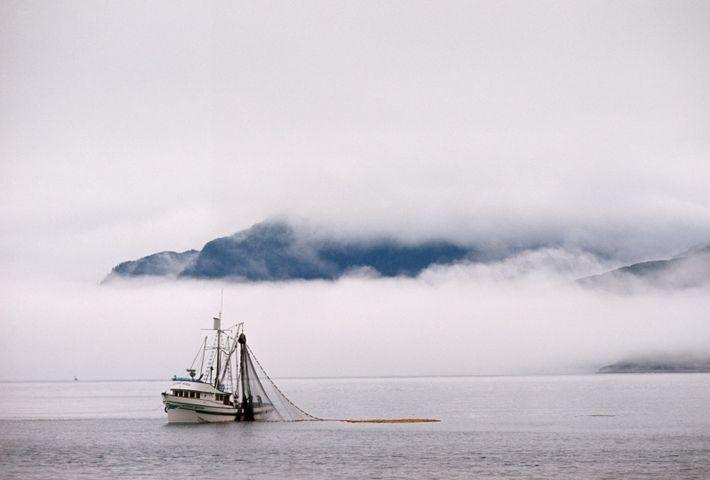 A neblina cobre as colinas ao longo de Icy Strait (Alasca), onde um barco pesca salmão.