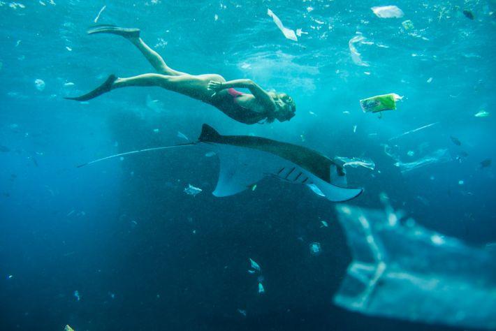 Mergulhadora com manta e plástico