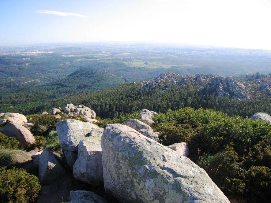 Pedra Amarela, Parque Nacional de Sintra-Cascais.