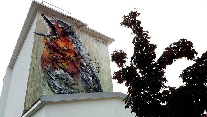 Arte urbana em Águeda