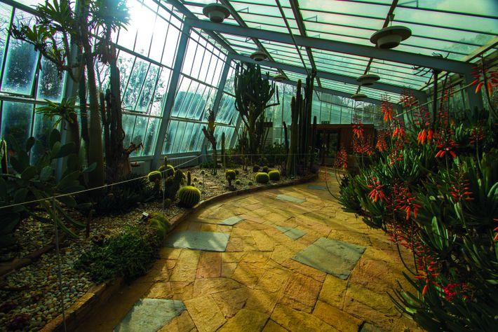 Jardim Botânico do Porto - Circuito Ciência Viva Porto