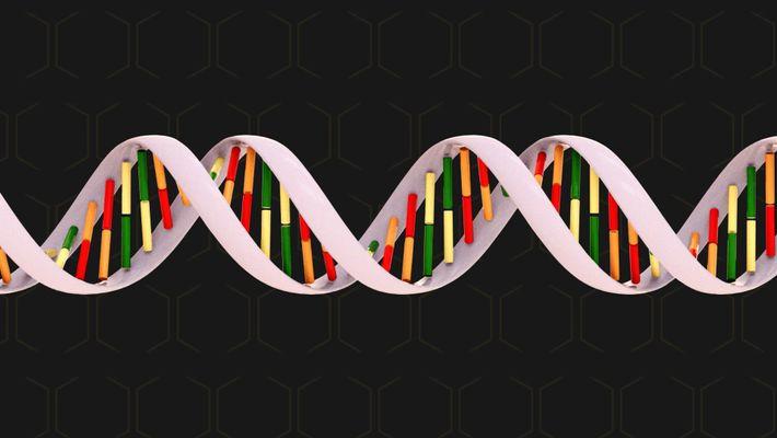 Guia de Genética