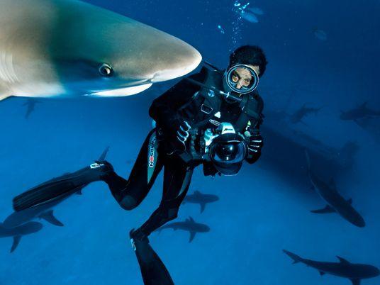 A Rolex Junta-se à National Geographic Numa Missão Vital