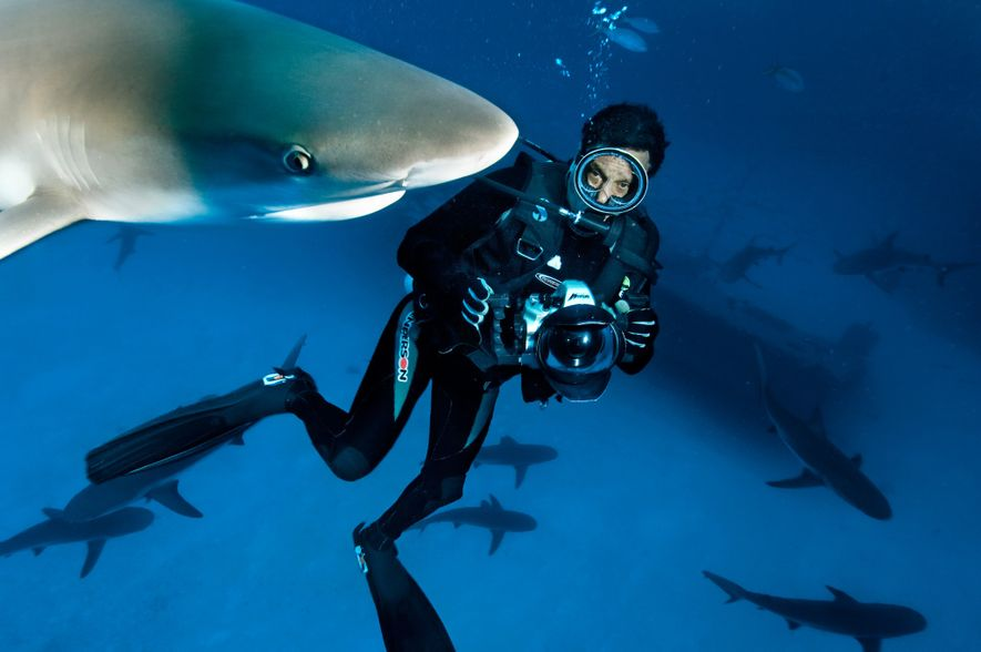 david doubilet National Geographic