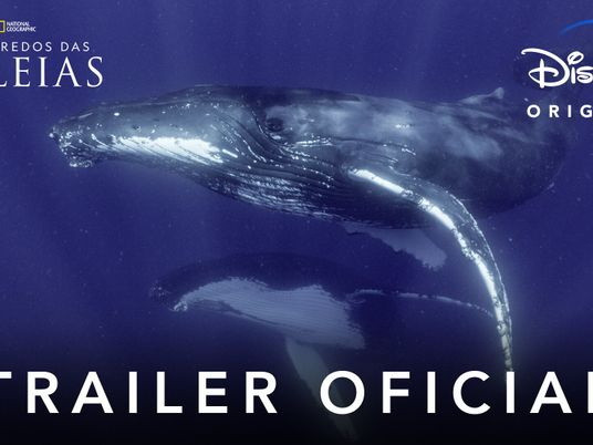 Secrets of the Whales Trailer PT