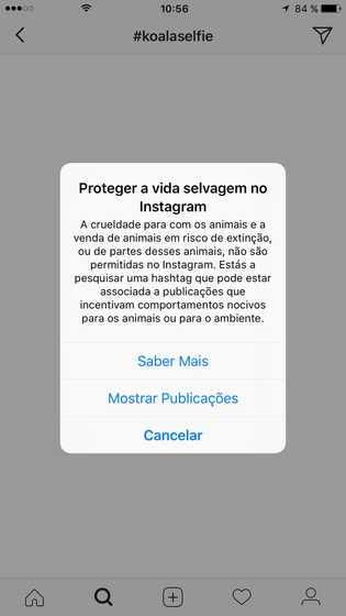 Alertas Instagram Maus-tratos Animais