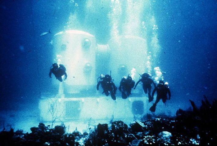 Créditos imagem: OAR/National Undersea Research Program (NURP)