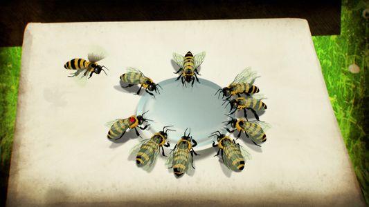 Sabia que as abelhas conseguem 'falar'?