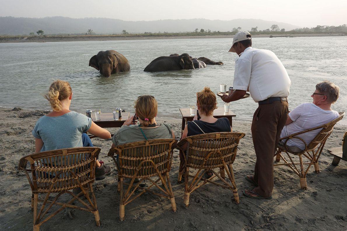 Hóspedes do Tiger Tops Elephant Camp, no Nepal, desfrutam de uma bebida enquanto observam elefantes a ...