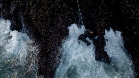 Os pescadores de percebes profissionais
