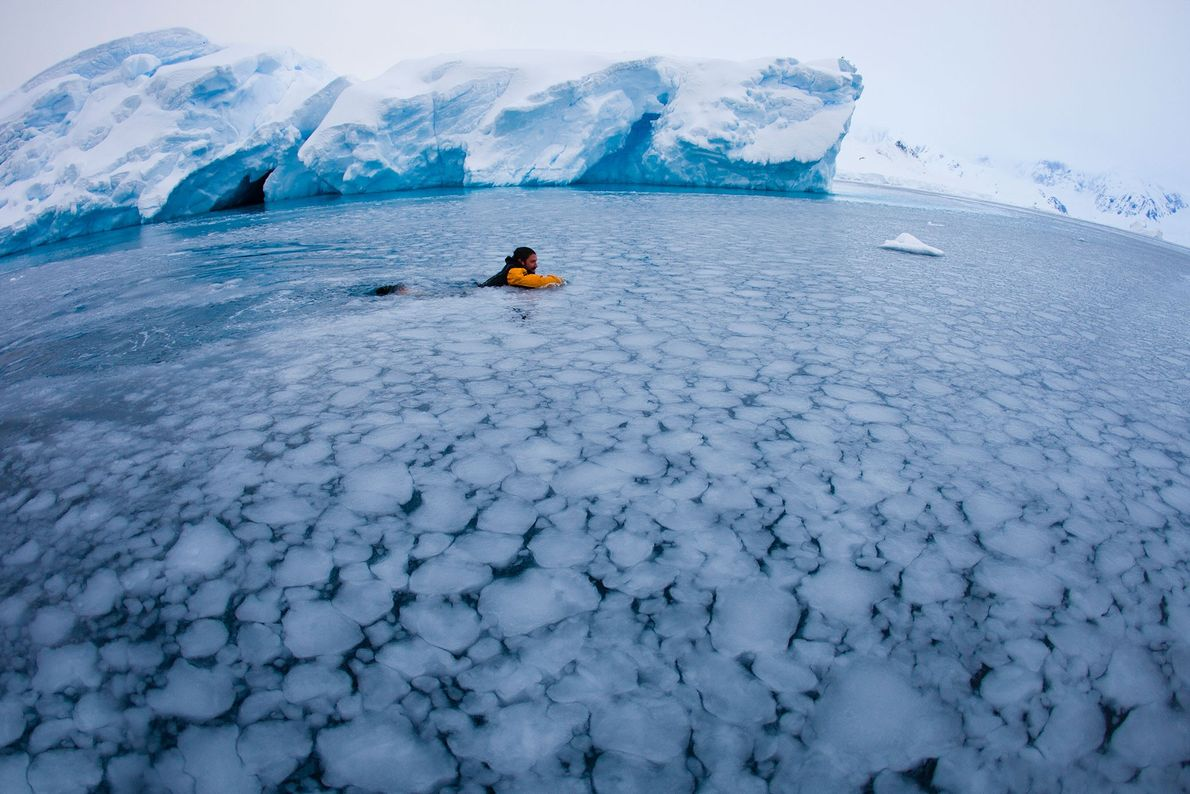 21 Aventuras Únicas no Gelo: Antártida