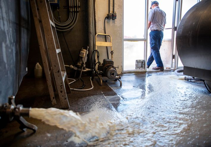 Ricky Jones, gestor de operações da Magic Valley Quality Milk Transport, sai das instalações da empresa ...