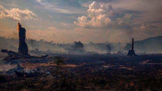 Uma Época Repleta de Furacões no Atlântico Pode Ser Sinónimo de Mais Incêndios na Amazónia