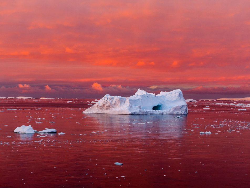 Fotografias Irresistíveis da Terra