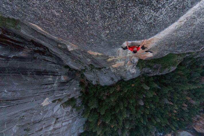 Honnold Yosemite