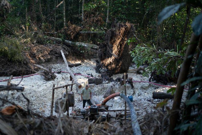 Mineração de ouro na floresta tropical do Brasil