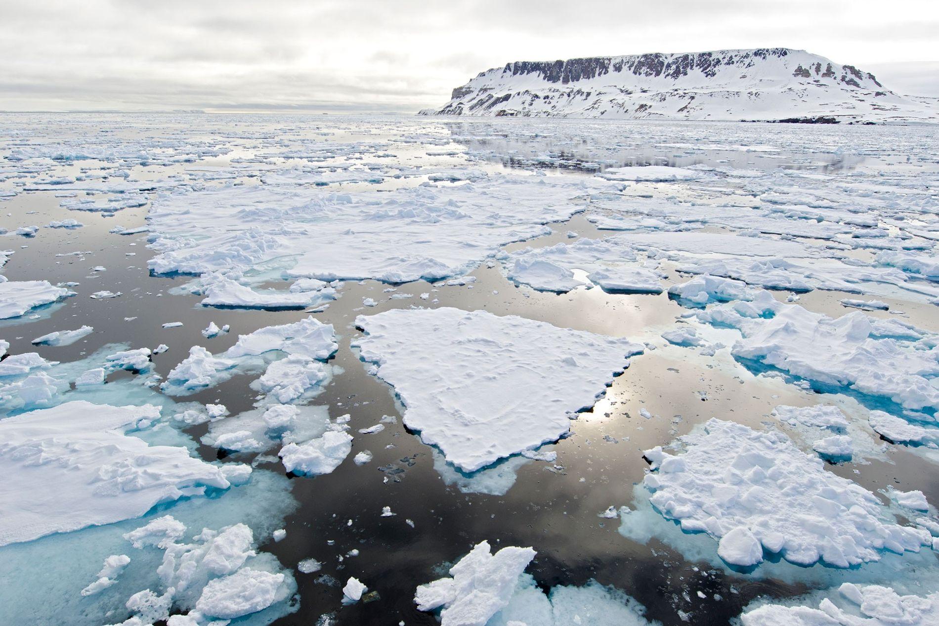 O gelo do Ártico está a ficar mais fino à medida que o planeta aquece.
