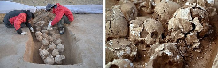 Os arqueólogos descobriram 80 crânios em fossos sob as muralhas da cidade. Todas as vítimas eram ...