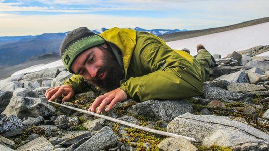 Flechas com Até 6000 Anos Estão a Emergir do Degelo na Noruega