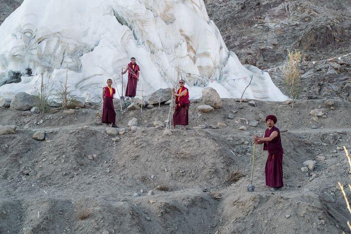 Os monges do Mosteiro de Phyang cuidam dos salgueiros e dos choupos mantidos pela água derretida ...