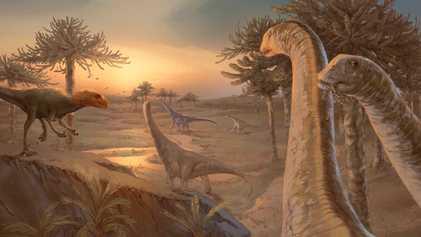 Inovação Anatómica Vem Explicar Evolução dos Dinossauros Saurópodes