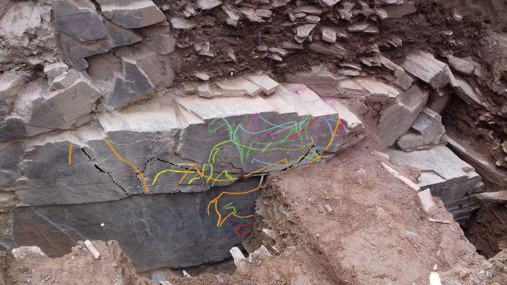 Ao achado da gravura rupestre do auroque soma-se a descoberta de um conjunto de novas gravuras de ...