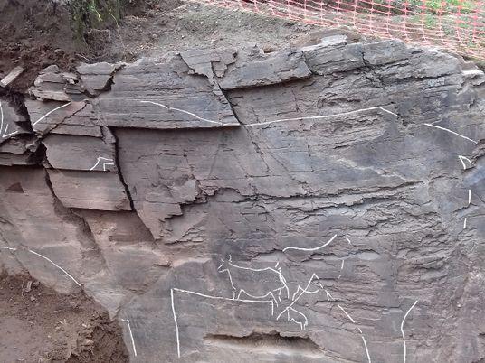 Uma das Maiores Gravuras Rupestres do Mundo Encontrada em Foz Côa
