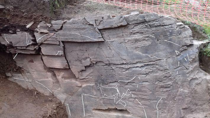 O painel ao ar livre onde foram encontradas várias figuras possui mais de 6 metros de comprimento.