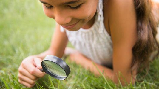 Faça Um Safari no Quintal com as Crianças