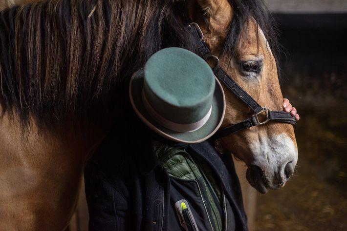 Um dos cerca de 200 cavalos que puxam carroças na cidade de Nova Iorque aguarda no ...