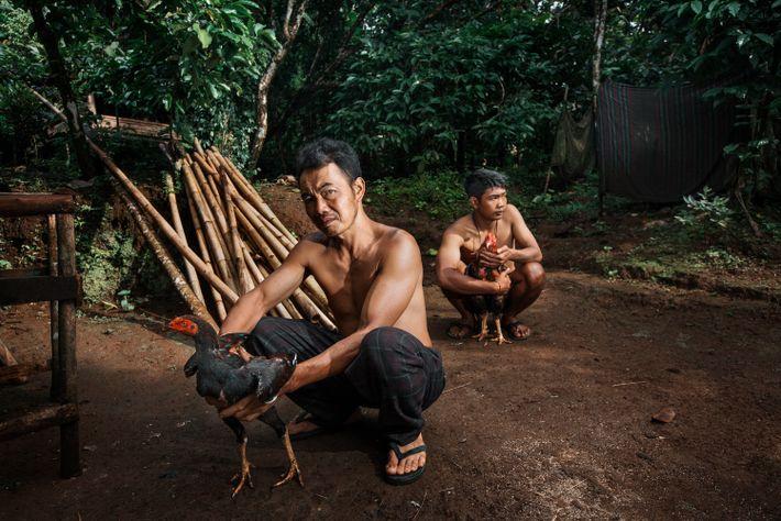 Sunarto, um dos mineiros do Monte Ijen, nasceu na aldeia vizinha de Plambang