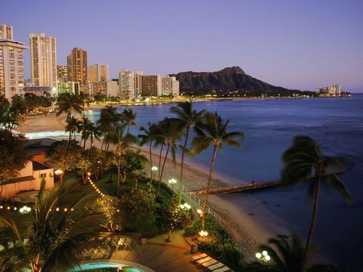 Fotografia: praia e palmeiras à noite
