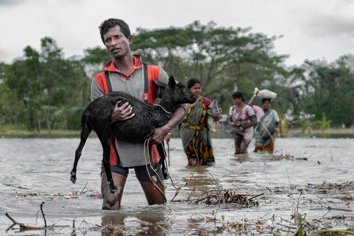 Em maio, uma tempestade tropical devastadora atingiu o leste da Índia e Bangladesh, matando dezenas de ...