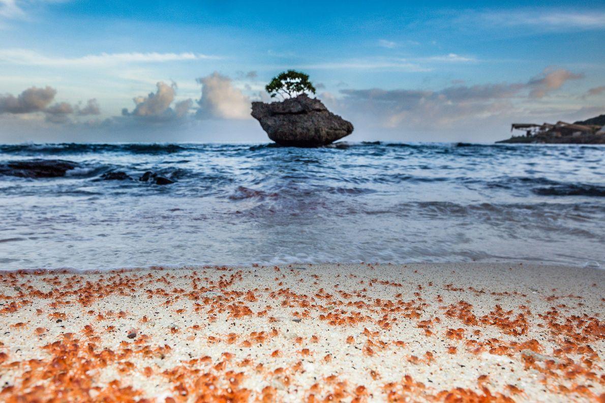 A lua determina os coloridos eventos de inverno nesta pequena ilha tropical: os habitantes celebram o ...
