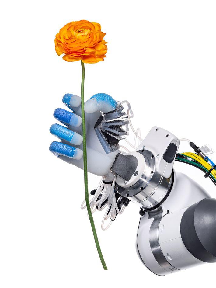 Com uma pega firme, mas delicada, uma mão robótica do Laboratório de Robótica e Biologia da ...