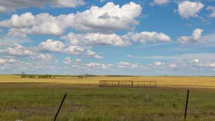 EUA comprometem-se a triplicar as suas áreas de terras protegidas