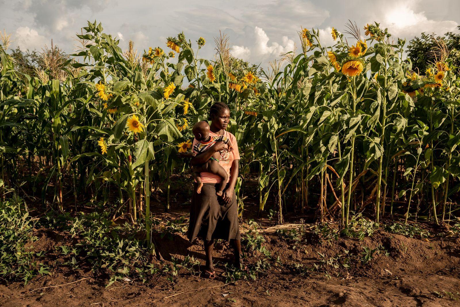 Susan Meneno com a filha de um ano, em frente ao campo de girassóis da sua ...