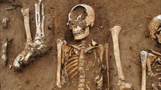 Mais de 40 indivíduos foram enterrados numa vala comum (em detalhe na imagem) nos terrenos da ...