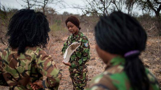 Black Mambas, um grupo 100% feminino, contra a caça furtiva