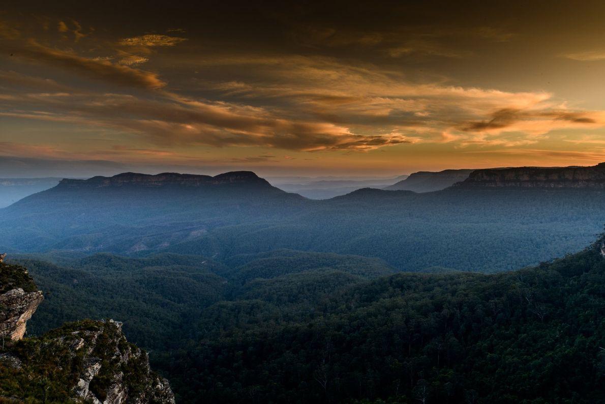 Uma névoa de orvalho paira sobre os densos eucaliptais, nas Blue Mountains de Nova Gales do ...
