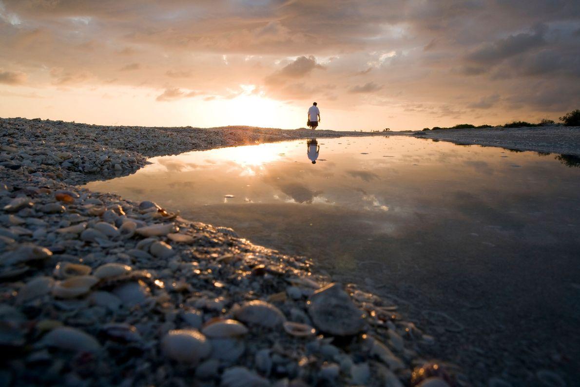 Praia de Bowman, Ilha de Sanibel, Flórida.
