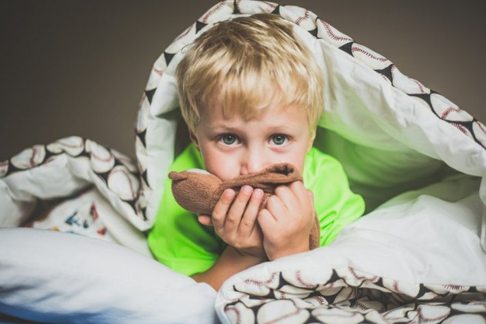 Criança cheira peluche - Aromaterapia