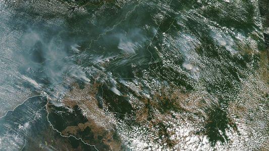 Amazónia Arde Como Nunca – A Culpa é da Desflorestação