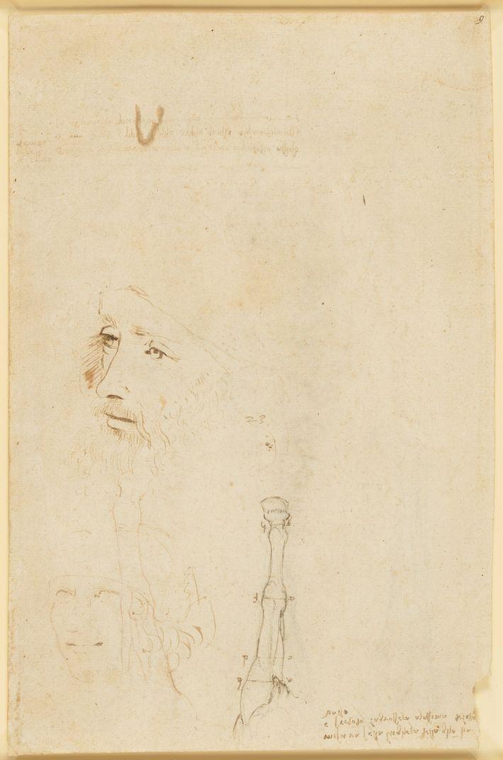 Este desenho está a ser exibido publicamente pela primeira vez na exposição na Galeria da Rainha, ...