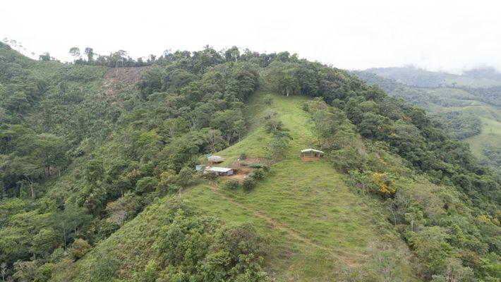 A região de Caquetá na Colômbia é considerada uma porta de entrada para a Amazónia. As ...