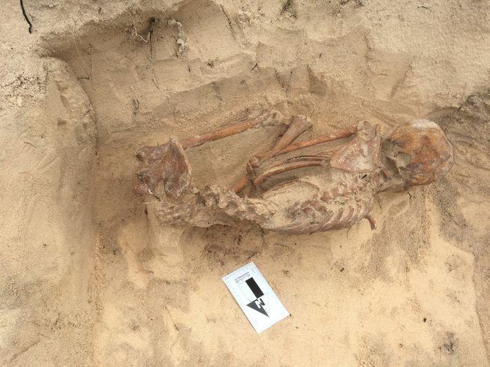 O estudo de Harvard baseou-se no ADN recuperado dos restos mortais de 174 indivíduos, incluindo esta ...