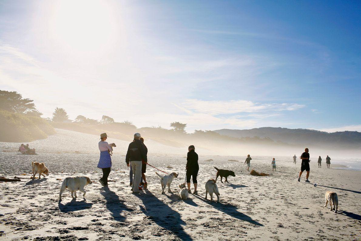 Praia de Carmel City, Carmel-by-the-Sea, Califórnia.