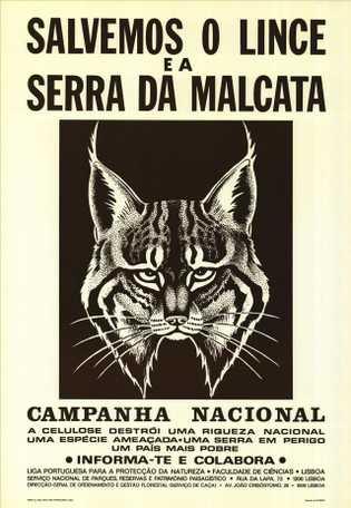 """Cartaz de divulgação da campanha nacional """"Salvemos o Lince e a Serra da Malcata"""" (1979)"""