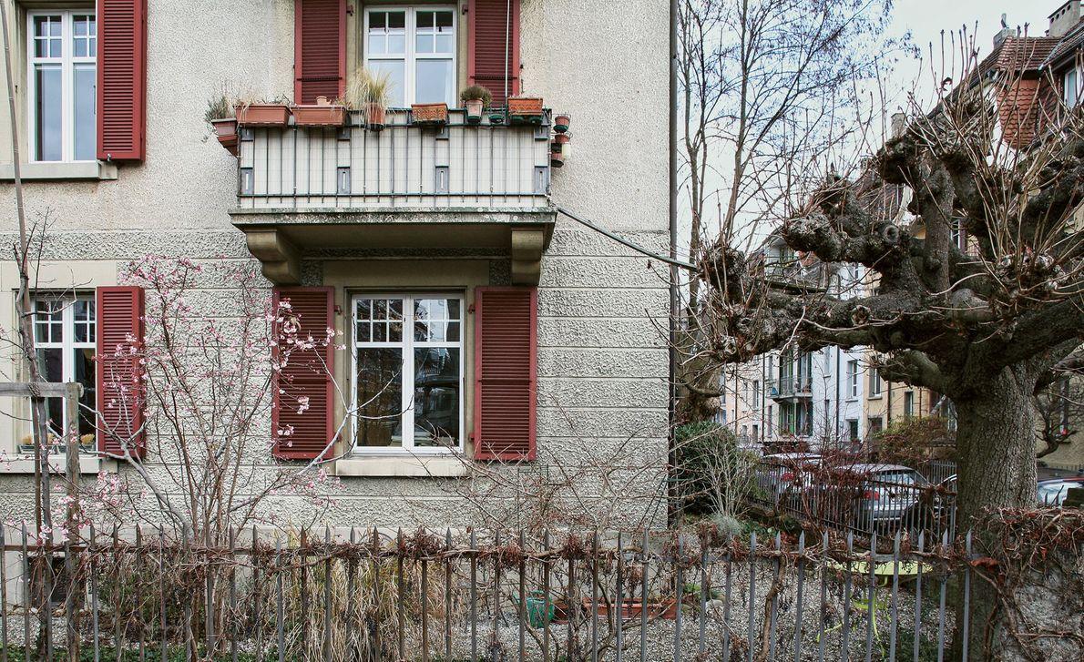 Sabina Maeder construiu uma ponte desde a varanda da sua casa até uma árvore, para o ...