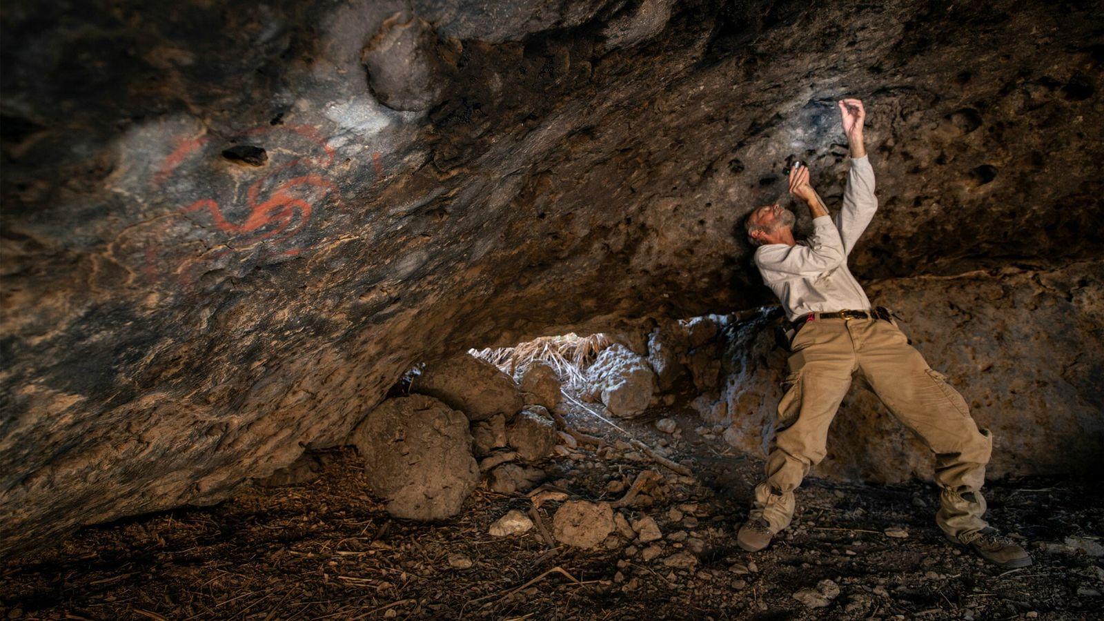 Jon Picciuolo, membro da equipa de investigação, documenta os pedaços de matéria vegetal mastigada que foram ...